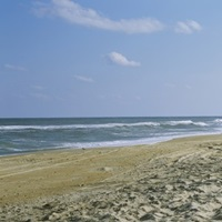 Tire tracks on the beach, Cape Hatteras, Outer Banks, North Carolina