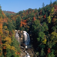 Waterfall in a forest, Whitewater Falls, Nantahala National Forest, North Carolina