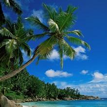 Seychelles, Indian Ocean, Africa