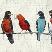 The Usual Suspects - Birds on a Wire