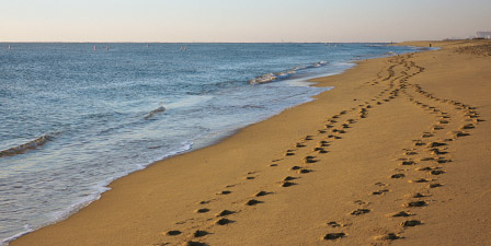 High angle view of footprints in the sand, Lake Michigan,...
