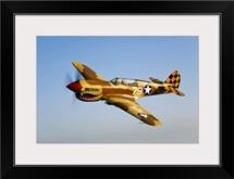 A P 40N Warhawk in flight