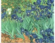 Irises, 1889 (oil on canvas)