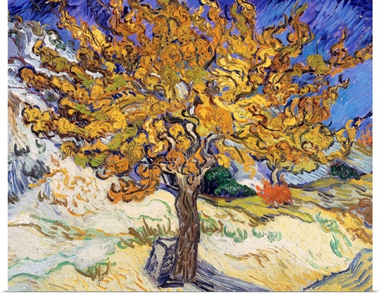 Mulberry Tree, 1889 (oil on canvas)