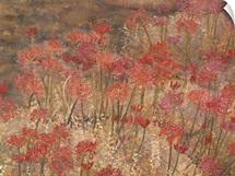 Equinox Flowers