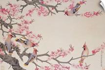 Singing Birds in Spring