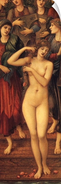 The Bath of Venus