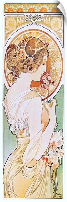Primrose, 1899