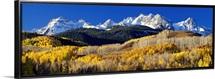 Colorado, Rocky Mountains, aspens, autumn
