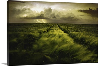 Journey To The Fierce Storm