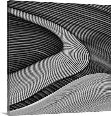 The Wood Project III - Zen Garden