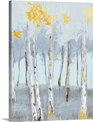 Birch Glint III