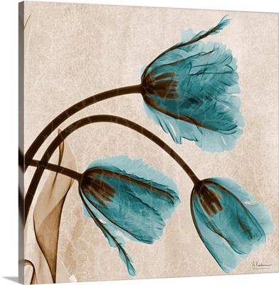 Blue Tulip X-Ray Photograph