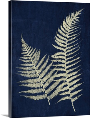 Dark Ferns I