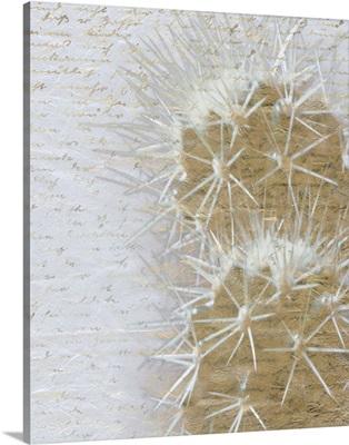 Desert Cacti II