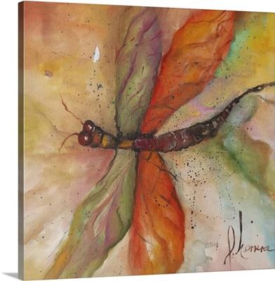 Dragonfly Tango