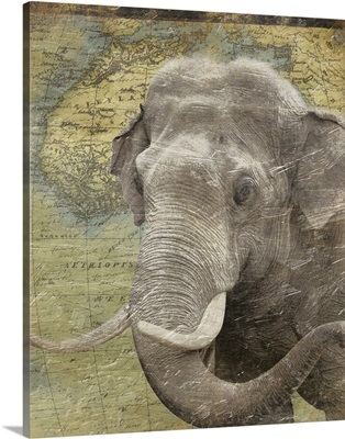 Elephant on Africa map