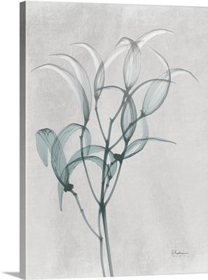 Emerald Oleander Bush