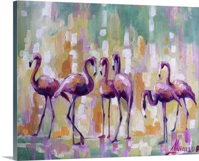 Flamingo Rendez-vous