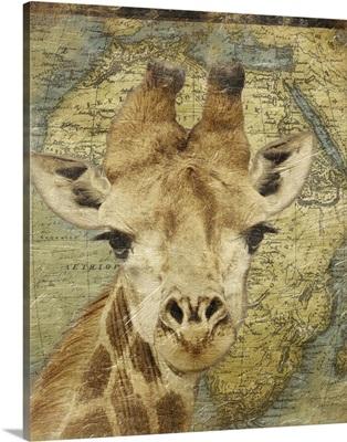 Giraffe on Africa map
