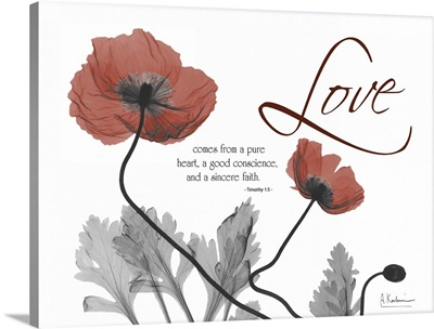 Love Poppies x-ray photography