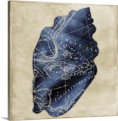 Map Shell, Indigo