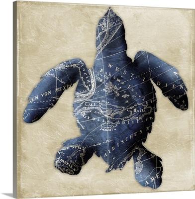 Map Turtle, Indigo