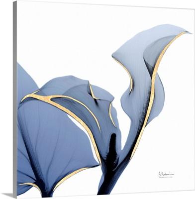 Moonlit Calla Lily