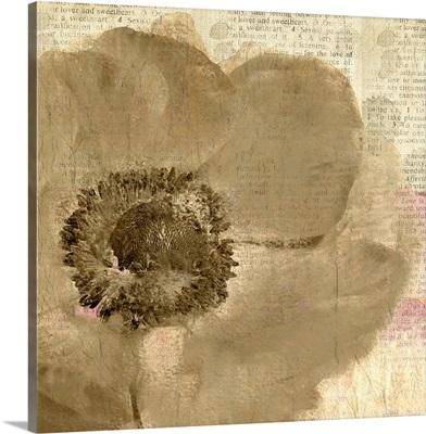 Newspaper Floral II