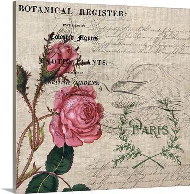 Pink Rose Botanical