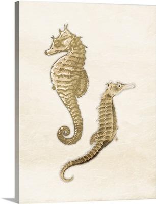 Seahorse Gold
