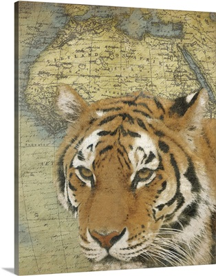 Tiger on Africa map