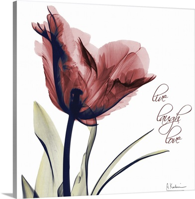 Tulip Live, Laugh, Love x-ray photography