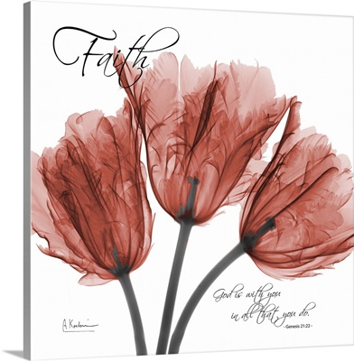 Tulips Faith x-ray photography