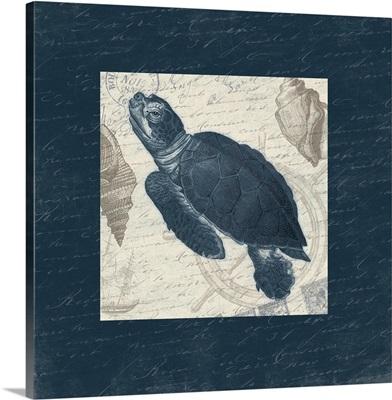 Turtle Bordered
