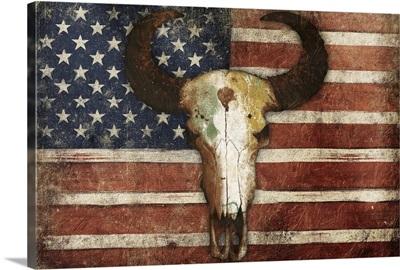 US Skull Flag