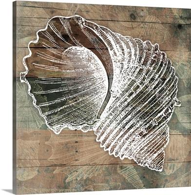 Vintage Wood Coastal Shell II