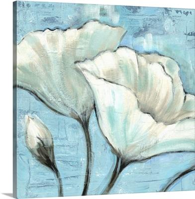 White Poppy II