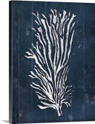 Wood Coral Blues II