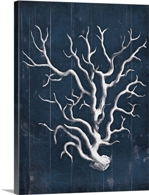 Wood Coral Blues V