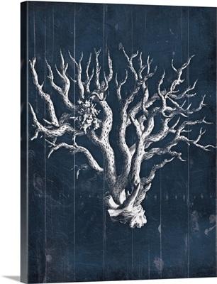 Wood Coral Blues VIII