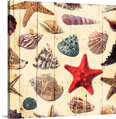 Wooden Sealife