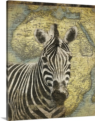 Zebra on Africa map