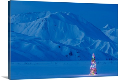 A Christmas Tree Lit Up At Twilight With The Alaska Range Behind