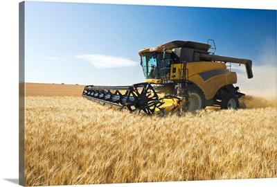 A Combine Harvests Durum Wheat Near Ponteix, Saskatchewan, Canada