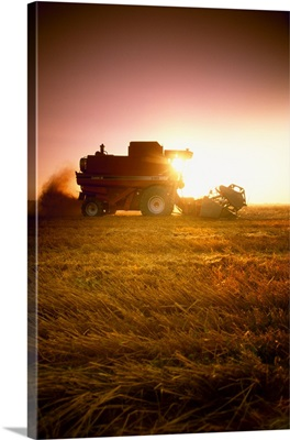 A combine harvests wheat in late afternoon with wheat stubble and debris