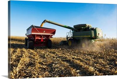 A farmer augers yellow grain corn from a combine into a grain wagon