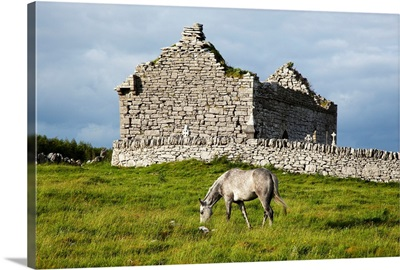 A horse grazing in a field with building ruins and a cemetery, Ireland
