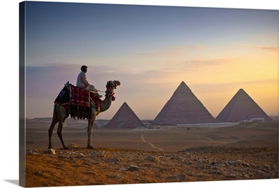 A lone camel and rider, Giza, Egypt