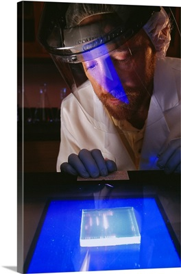 A research scientist creating genetic markers with electrophoresis gels